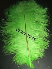 """20 LIME OSTRICH FEATHERS 10-12""""L GRADE *B*"""