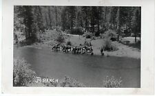 Real Photo Postcard Horses Having a Drink at Rivers Edge, M Ranch