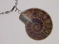 BUTW- Silver Ammonite nautiloid fossil 45mm  pendant necklace jewelry 6165K