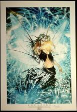 SOULFIRE NEW YEARS ASPENSTORE PRINT / MICHAEL TURNER & PETER STEIGERWALD