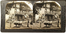 Keystone Stereoview of an Old Farmhouse, Lemona, SPAIN from the 1930's T600 Set