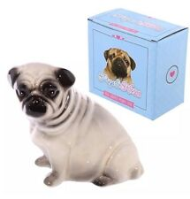 Pug Money Box Piggy Bank Boxed Novelty Ceramic SALE SALE SALE