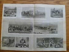 Ostrich Farming-1878 Engravings with Text-South Africa