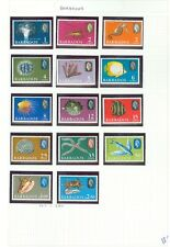 BARBADOS : Beautiful collection. All Very Fine, MNH. Birds. Scott Catalog $150.