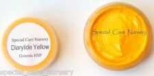 Genesis heat set paint 2g/ml Diarylide Yellow - Buy any 5 pots get 6th FREE!