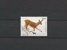 BULGARIE CHEVREUIL WILDLIFE ROE DEER 1993