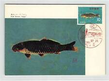 JAPAN MK 1966 FISCHE FISH CARP KOI MAXIMUMKARTE CARTE MAXIMUM CARD MC CM d9628