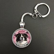 Personalised Border Collie Dog Pendant On A Snake Keyring Ideal Gift N737w