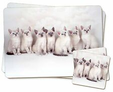Snowshoe Kittens Snow Show Cats Twin 2x Placemats+2x Coasters Set in G, AC-111PC