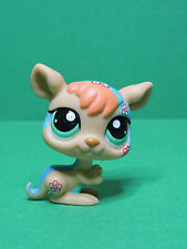 #1437 Kangourou Postcard rainbow kangaroo LPS Littlest Pet Shop Figurine figure