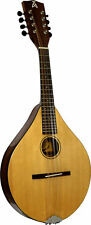 Ashbury STYLE-E MANDOLIN Solid Sitka Spruce top, Beautiful! From Hobgoblin Music