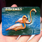 SOUVENIR RESIN FRIDGE MAGNET ----Bahamas