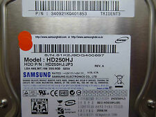250 GB Samsung HD250HJ / 340921KQ401853 / 2008.04 / BF41-00180A Rev.07 hard disc