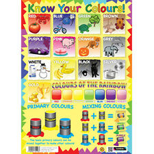 KNOW YOUR COLOURS EDUCATIONAL POSTER EARLY LEARNING WALL CHART TEACHING RESOURCE