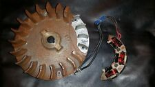 Briggs & Stratton 5hp Electric Start Flywheel  Alternator NEW old stock FREE SHP