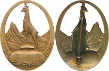 11° Bataillon de Chars de Combat Alpins, ajouré, bronze, pastille ovale, Augis