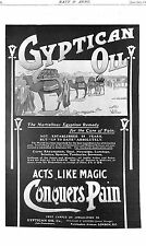 Gyptian Oil.Advert.Camel.1903.Desert.Remedy.Pain.Cure.Medicine.Chemistry