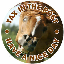 FUNNY HORSE - FUN CAR STICKER  /  DECAL - TAX IN THE POST +1 FREE - NEW / GIFT