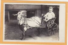 Real Photo Postcard RPPC - Infant in Goat Cart
