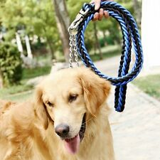 Quality Big Pet High Collar Chain Leather Leashes Large Dogs Dog Rope Traction