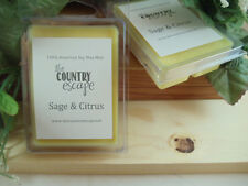 Sage and Citrus Scented Soy Wax Clamshell Melt Tart- 2wks of Fragrance
