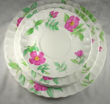 Mikasa Maxima Fleuriste 12 pieces - Dinner Salad Bread Plates, Saucers