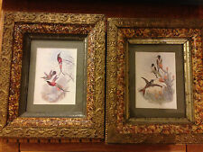 Pair Antique Carved Gilt Faux Marble Victorian Shadowbox Frames c1880 bird print