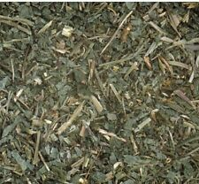 GROUND IVY Loose Herb 50g Respiratory Remedy