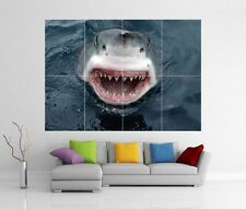 Great White Shark Attack Gigante De Pared Art Print imagen Cartel h244