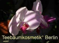 ***d-Panthenol 75%, 30ml (Provitamin B5)  kosmet. Hilfsstoff