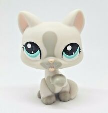 Littlest Pet Shop Gray Grey Cat Licking Paw Blue Eyes #1472 Preowned LPS Hasbro
