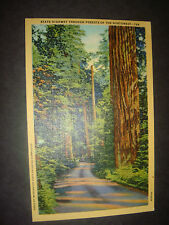 Vintage linen PC State Highway Through Forests of the Great Northwest