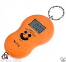 Portable Electronic Digital LCD Display Luggage Scale 50kg With Temperature(Org)