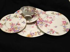 SERVICE FOR 4 - (5) PIECE SETTING OF CASTLETON CHINA IN THE SUNNYBROOKE PATTERN