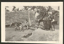 INDE INDIA IMAGE PONDICHERY ?? MOULIN A HUILE 1942 OLD PRINT