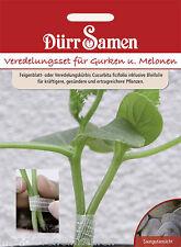 Veredelungsset für Gurken und Melonen Unterlage Resistent Welke Fäule Dürr Samen
