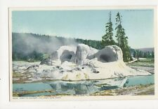 Grotto Geyser Yellowstone Park USA Vintage Postcard 316a