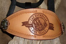 Custom Bronc Halter, Your Horses Name, Award, Brand, Laser Brand. G&E Leather