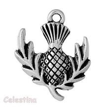 5 Scottish Thistle Charms Antique Silver Pendants Beads - Plants 24mm