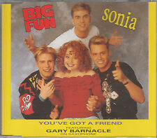 Sonia & Big Fun CD-SINGLE YOU'VE GOT A FRIEND (c) 1990 PWL