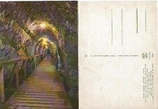 UNUSED OLD POSTCARD ISRAEL  MEGIDO WATER SYSTEM TUNNEL CUT IN THE ROCK  LEADING