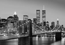 New York Mural De Pared Foto Wallpaper 366x254cm Cityscape Manhattan Skyline Noche