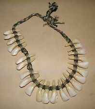 RARE CA 1880 NATIVE AMERICAN PLAINS INDIAN   BUFFALO TOOTH NECKLACE
