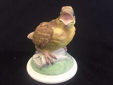 Boehm Porcelain Bird Figurine - 448 - Baby Goldfinch