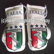 Italy Flag/Italia/Italy Map mini boxing gloves for your car mirror-Get the best.