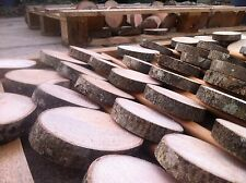 1x Real Rustic wood Log Slices Tree Ash piece Table Round Chic 9-12x2Cm