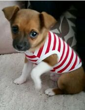 Tea Cup Chihuahua XX Small Puppy Kitten Size Dog Clothes Red & White Strips Top