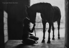 Limited Edition Print From Charcoal Drawing Of Horse Portrait Titled: The Kiss