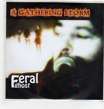 (FL325) Feral Ghost, A Gathering Storm - DJ CD