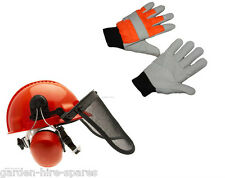 Chainsaw Forestry Helmet & Large Chainsaw Gloves For All Chainsaw Users